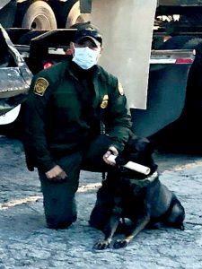 CBP Canine Oct 2